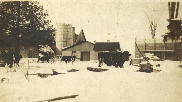 patrickbrennanstockyard-1920s
